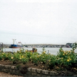 montrose_towards_ferryden