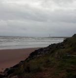 montrose_beach_1