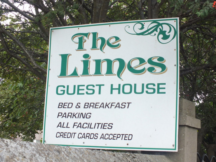 the_limes_1