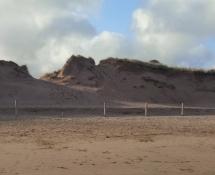 Beach 18.jpg