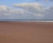 Beach 21.jpg