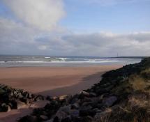 Beach 24.jpg