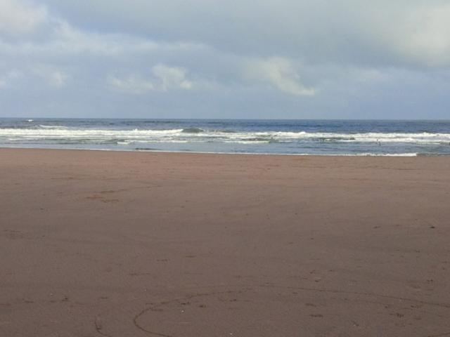 Beach 14.jpg