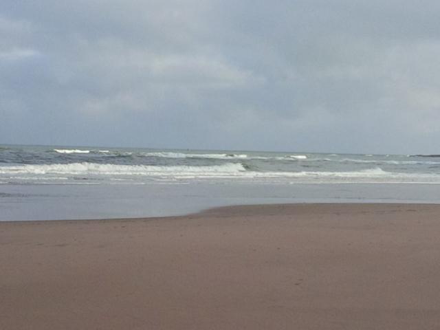 Beach 8.jpg